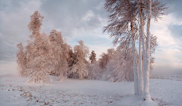 Игра щенячий патруль зимой на русском языке